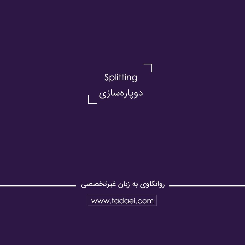 دوپارهسازی (Splitting) چیست؟